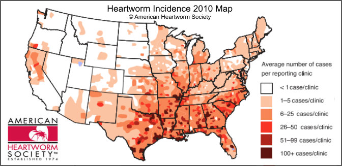 usa-heartworm-incidence-2010-map
