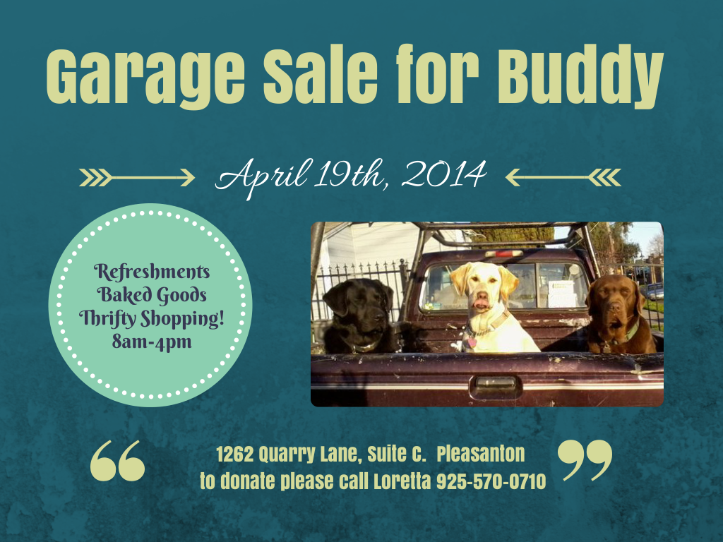 Garage Sale for Buddy (6)