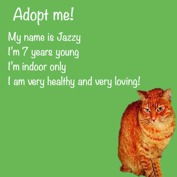 Jazzy Adoption