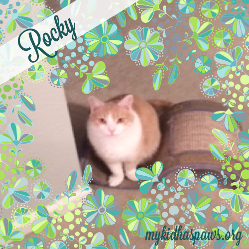 RockyBlog