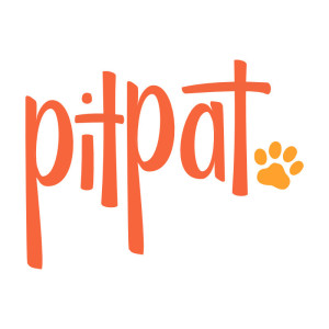 PitPat orange Logo