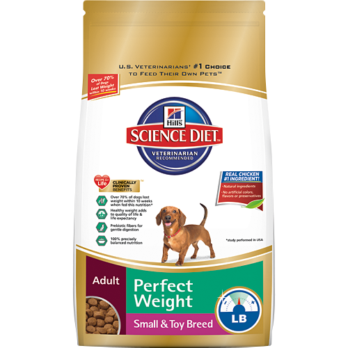 Best Dog Food for Dobermans: Avoid Health Problems with a Good Diet