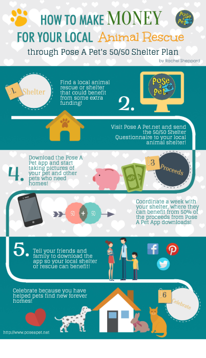 PoseAPet Infographic New