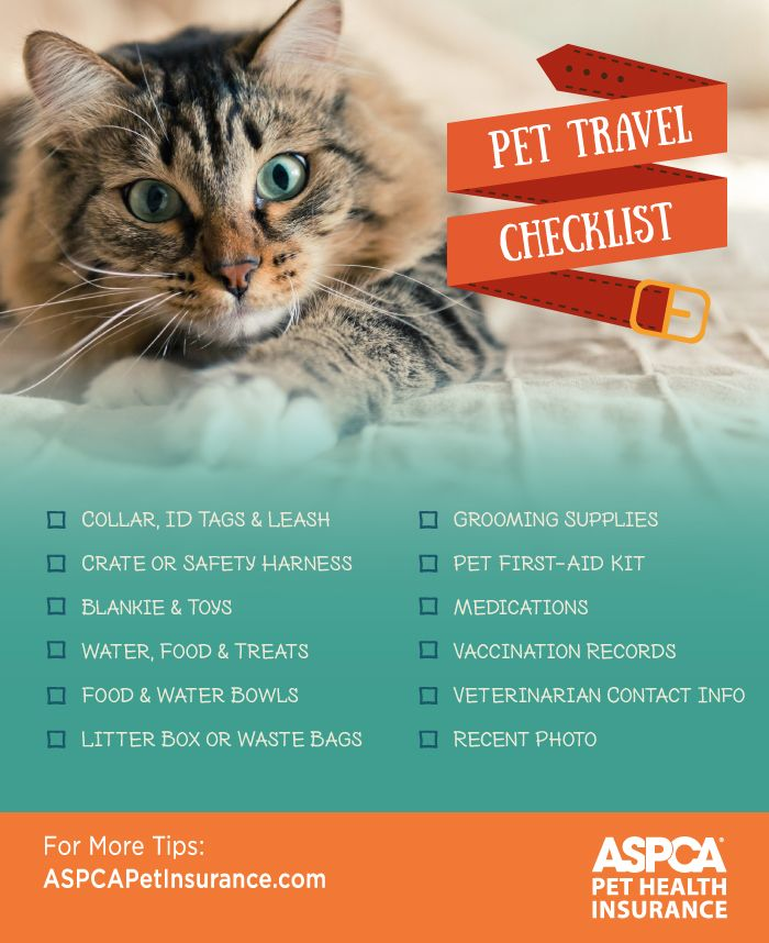 ASPCA Pet Travel Checklist