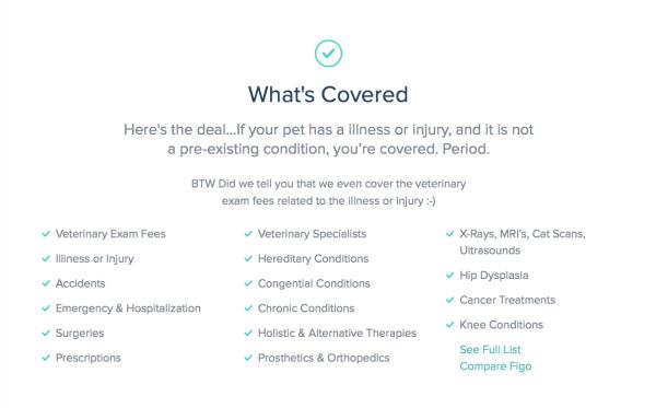 Figo-Insurance-1