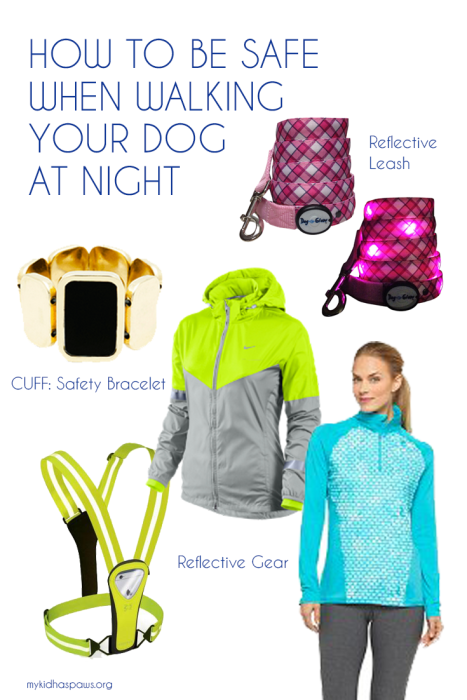How to Be Safe When Walking Your Dog at Night
