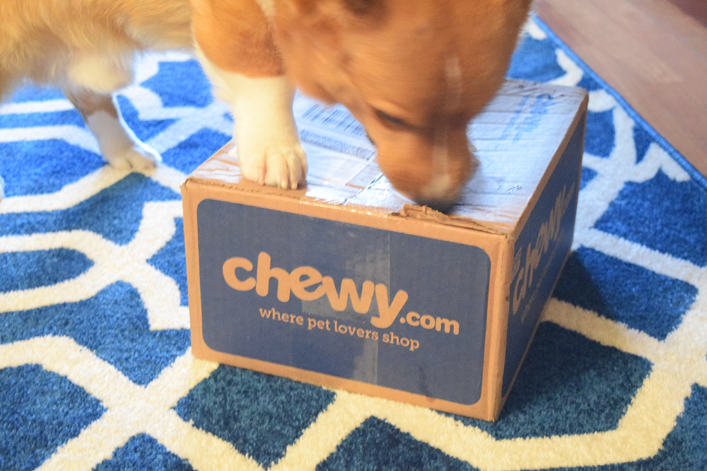 Chewy.com and Benebone