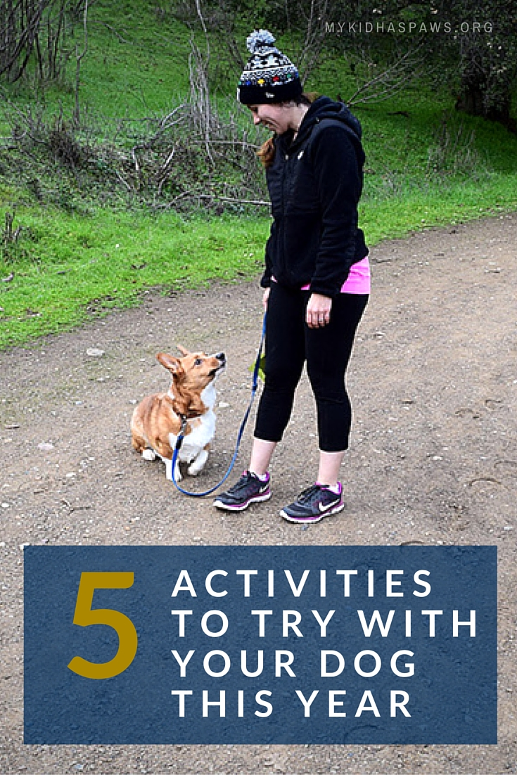 5 Activities to Try With Your Dog This Year #MKHPJanuaryChallenge