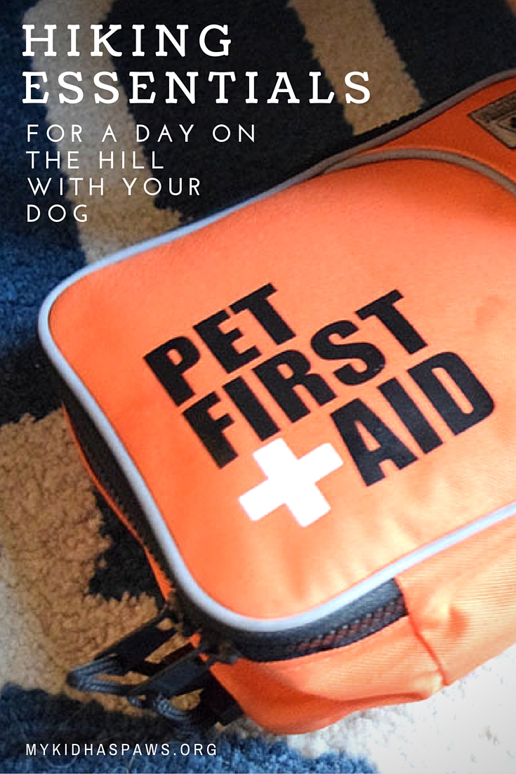 Hiking Essentials for a Day on the Hill With Your Dog