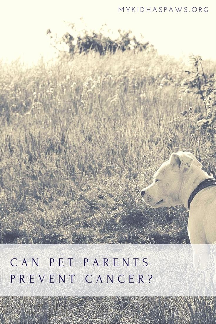 Can Pet Parents Prevent Cancer?