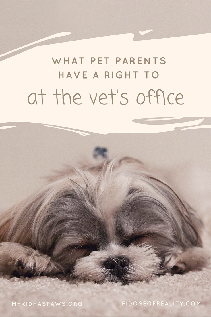 What Pet Parents Have a Right to at the Vet