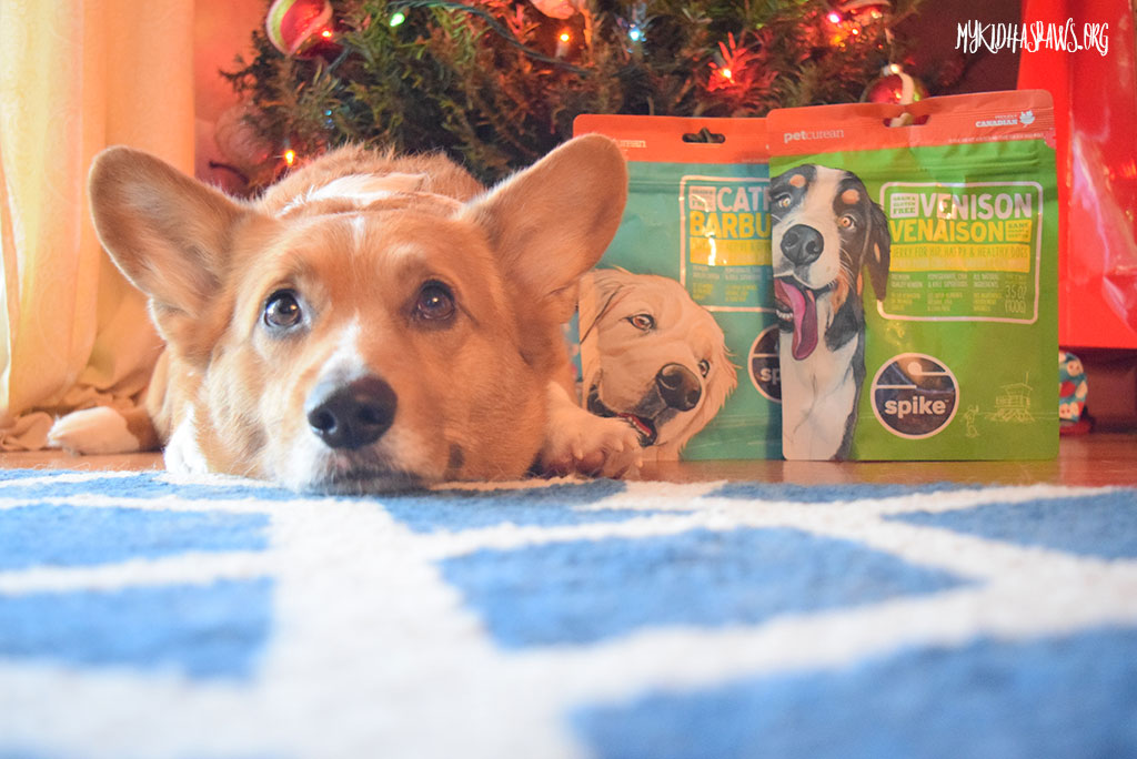 SPIKE Treats Stocking Stuffers with Petcurean