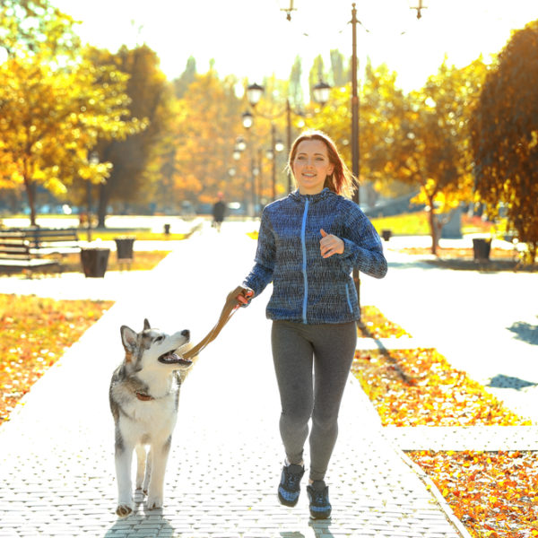 Help New Moms with Dogs - Petcurean