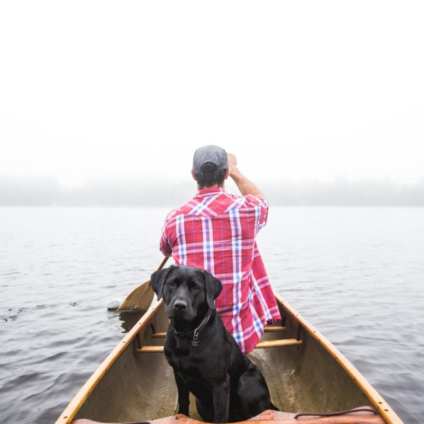 3 Ways to Bond with Your Dog - Petcurean
