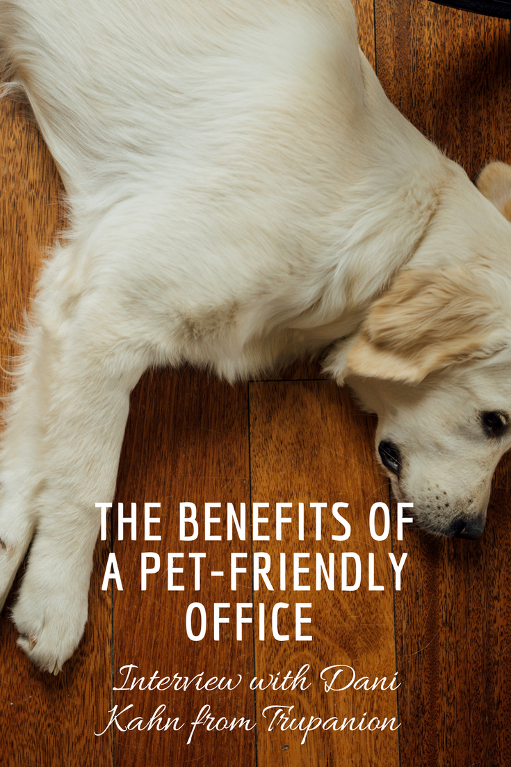 THE BENEFITS OF A PET-FRIENDLY OFFICE